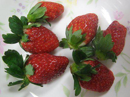 イチゴの画像 p1_6