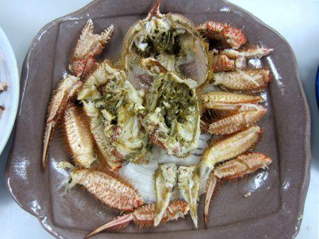 活き毛蟹 取寄せられた塩茹で毛蟹  ケガニ(毛蟹)【かぎけんWEB】