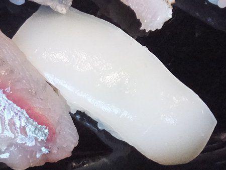 SUSI[寿司]